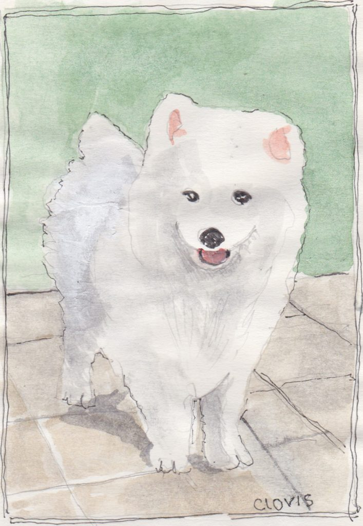 """Akita Puppy,"" a Bring-a-Smile watercolor by Clovis Heimsath, artist"