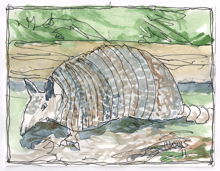 """Armadillo 3,"" a Bring-a-Smile watercolor by Clovis Heimsath, artist"