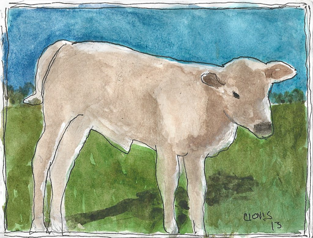 """Baby Calf,"" a Bring-a-Smile watercolor by Clovis Heimsath, artist"