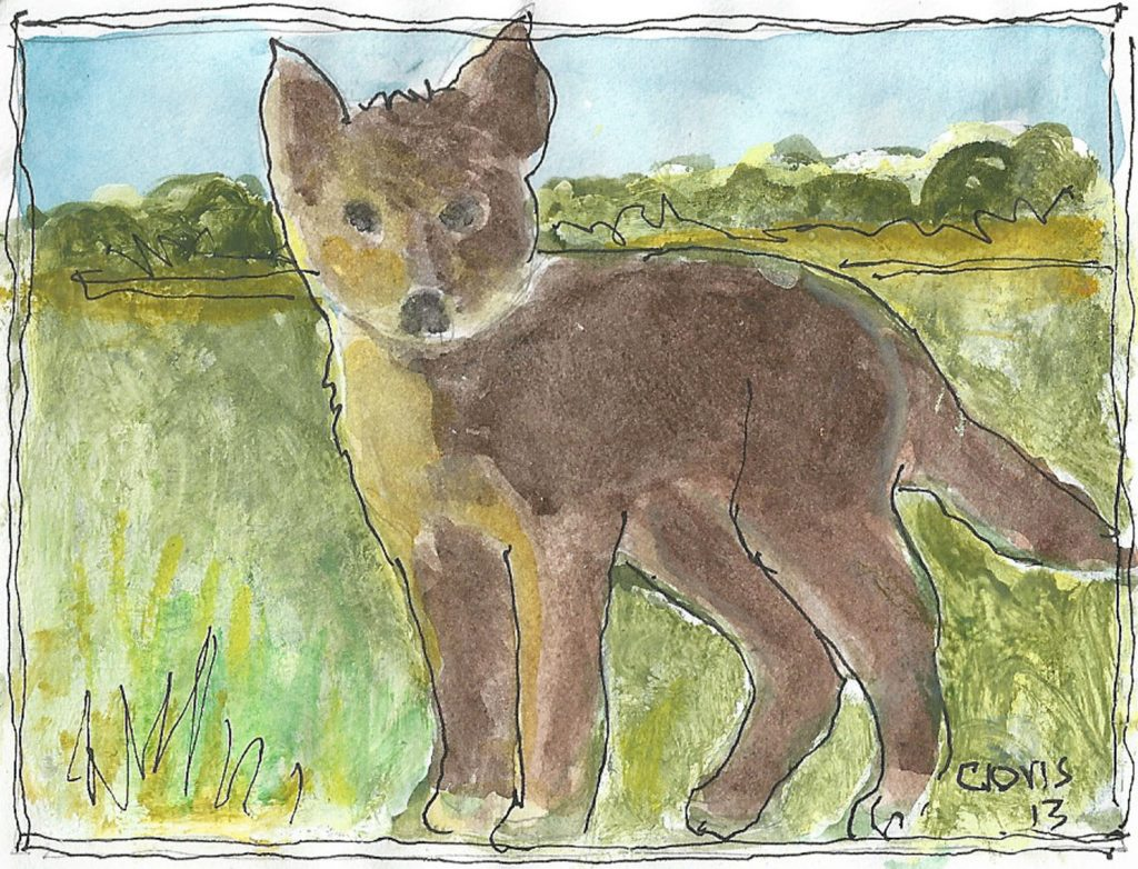 """Baby Fox,"" a Bring-a-Smile watercolor by Clovis Heimsath, artist"