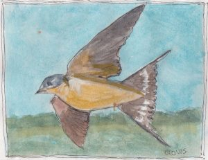 """Barn Swallow,"" a Bring-a-Smile watercolor by Clovis Heimsath, artist"