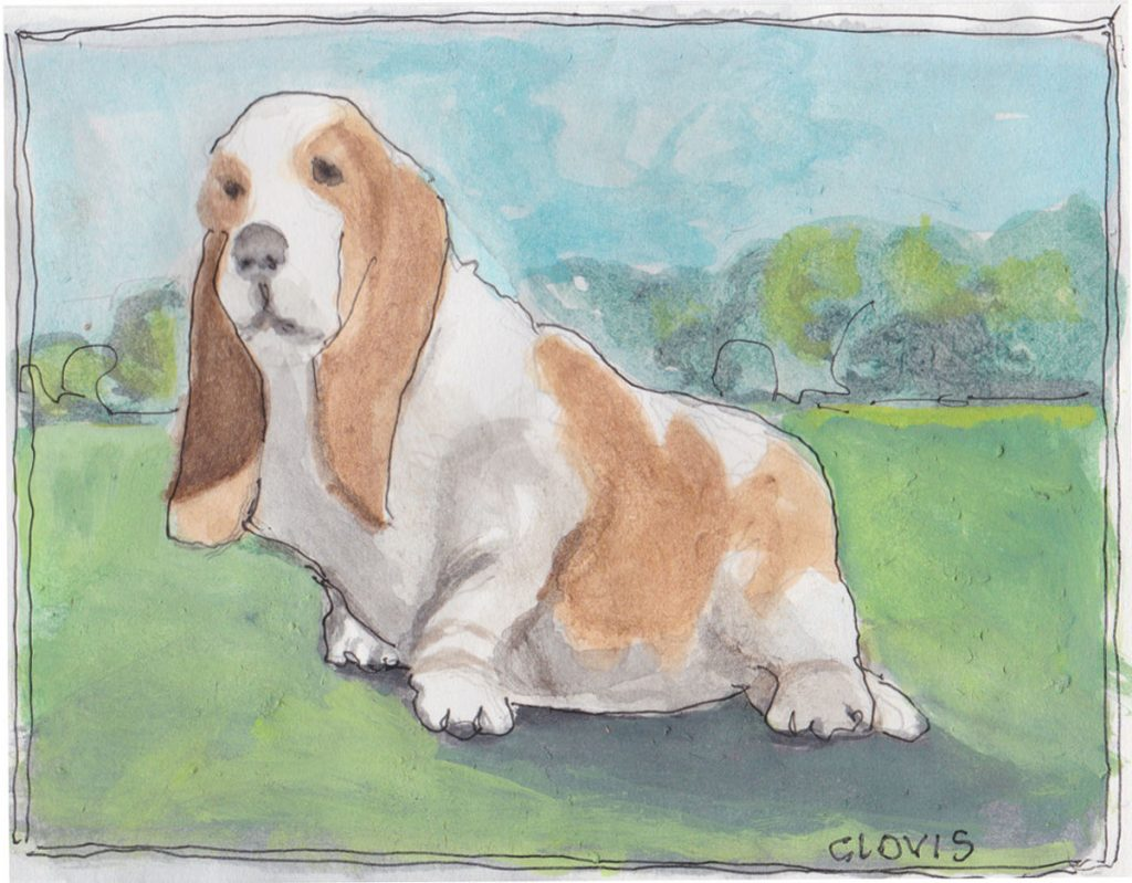 """Basset Hound,"" a Bring-a-Smile watercolor by Clovis Heimsath, artist"