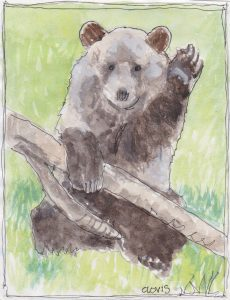 """Bear,"" a Bring-a-Smile watercolor by Clovis Heimsath, artist"