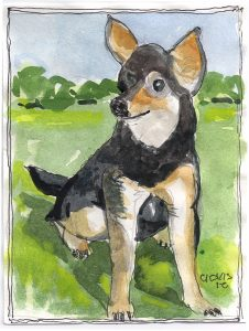 """Black Chihuahua,"" a Bring-a-Smile watercolor by Clovis Heimsath, artist"