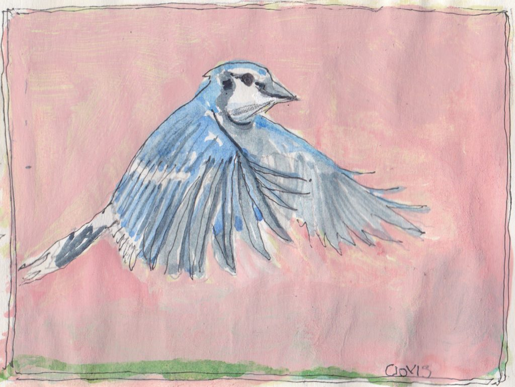 """Blue Jay 3,"" a Bring-a-Smile watercolor by Clovis Heimsath, artist"