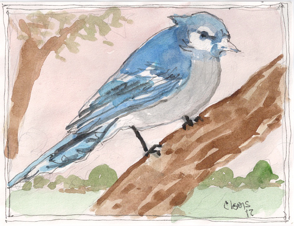 """Blue Jay,"" a Bring-a-Smile watercolor by Clovis Heimsath, artist"