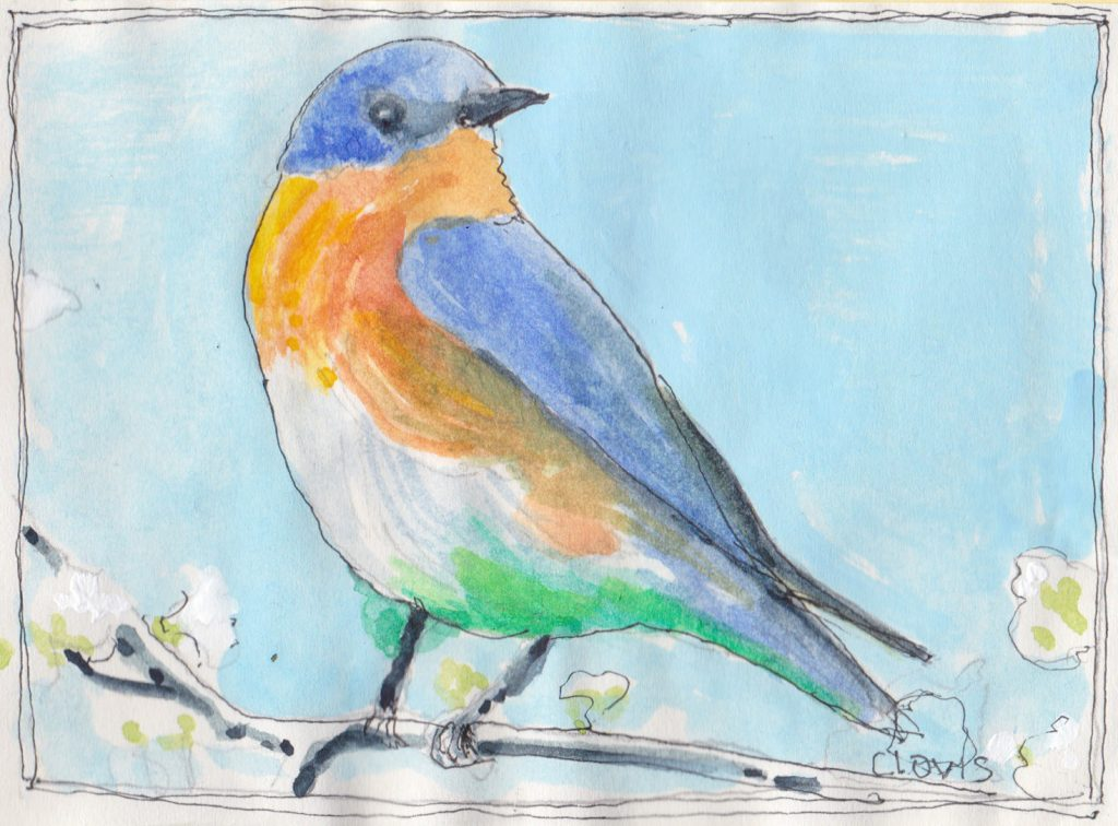 """Bluebird 2,"" a Bring-a-Smile watercolor by Clovis Heimsath, artist"
