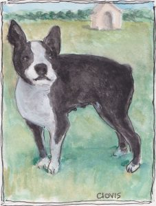 """Boston Terrier,"" a Bring-a-Smile watercolor by Clovis Heimsath, artist"