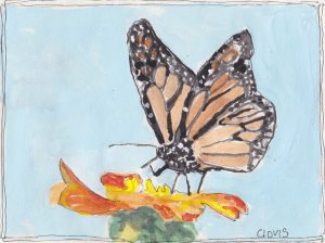"""Butterfly 2,"" a Bring-a-Smile watercolor by Clovis Heimsath, artist"