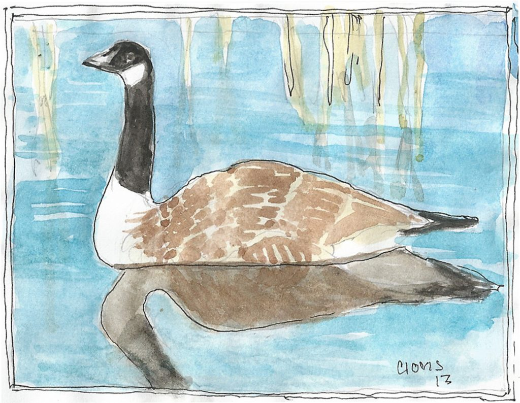 """Canadian Goose,"" a Bring-a-Smile watercolor by Clovis Heimsath, artist"