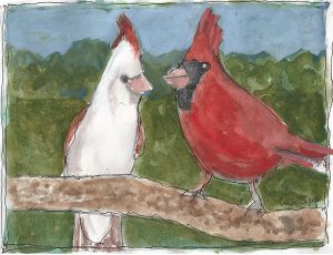 """Cardinals Ps,"" a Bring-a-Smile watercolor by Clovis Heimsath, artist"