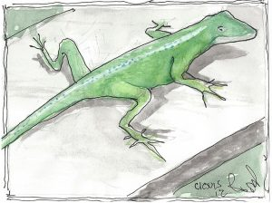 """Chameleon,"" a Bring-a-Smile watercolor by Clovis Heimsath, artist"