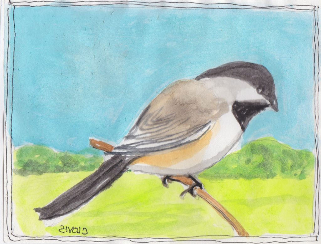 """Chickadee 2,"" a Bring-a-Smile watercolor by Clovis Heimsath, artist"