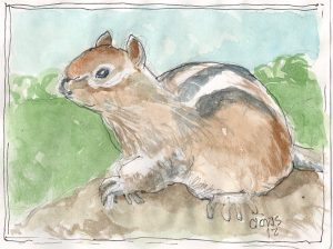 """Chipmunk,"" a Bring-a-Smile watercolor by Clovis Heimsath, artist"