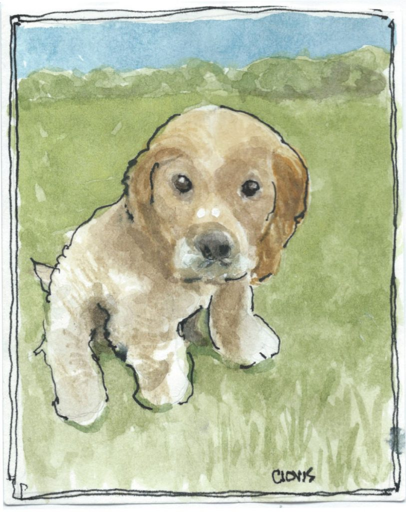 """Cocker Spaniel,"" a Bring-a-Smile watercolor by Clovis Heimsath, artist"