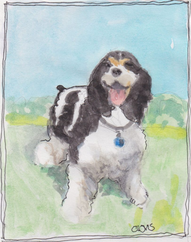 """Cocker Spaniel 2,"" a Bring-a-Smile watercolor by Clovis Heimsath, artist"