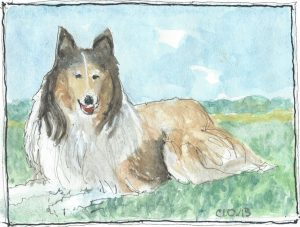 """Collie,"" a Bring-a-Smile watercolor by Clovis Heimsath, artist"