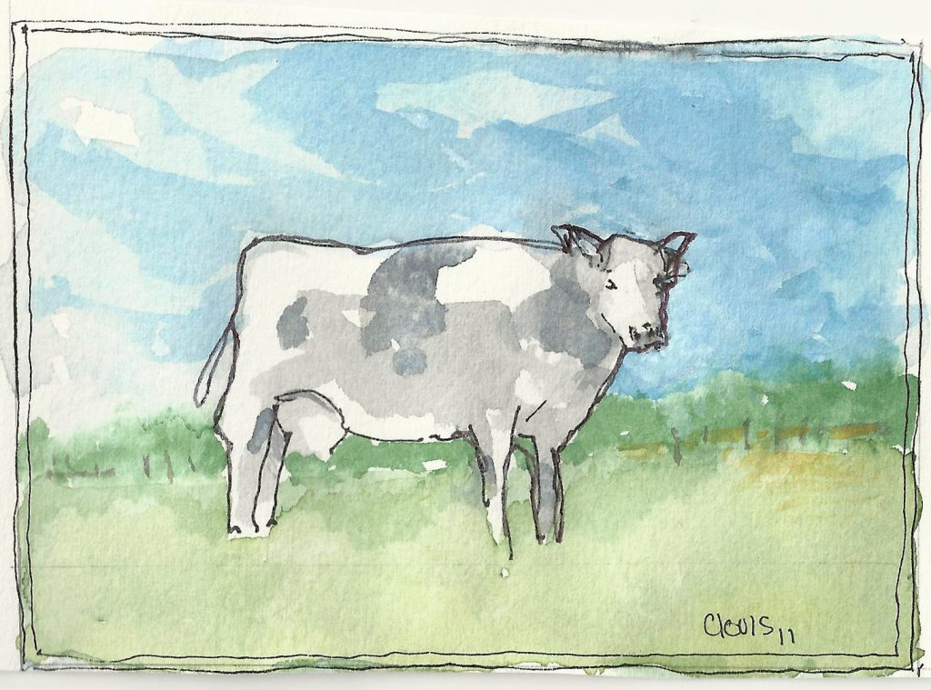 """Cow,"" a Bring-a-Smile watercolor by Clovis Heimsath, artist"