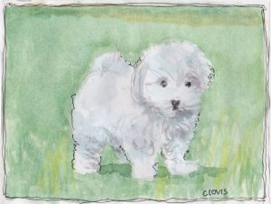 """Cute Puppy,"" a Bring-a-Smile watercolor by Clovis Heimsath, artist"