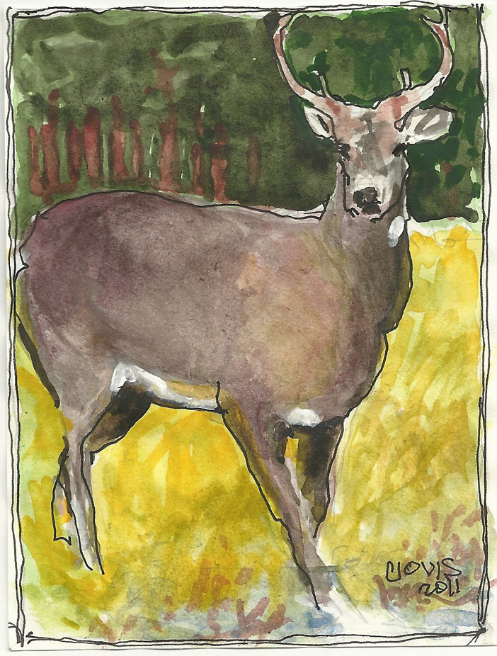 """Deer,"" a Bring-a-Smile watercolor by Clovis Heimsath, artist"