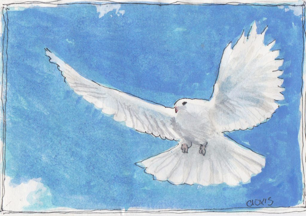 """Dove 4,"" a Bring-a-Smile watercolor by Clovis Heimsath, artist"