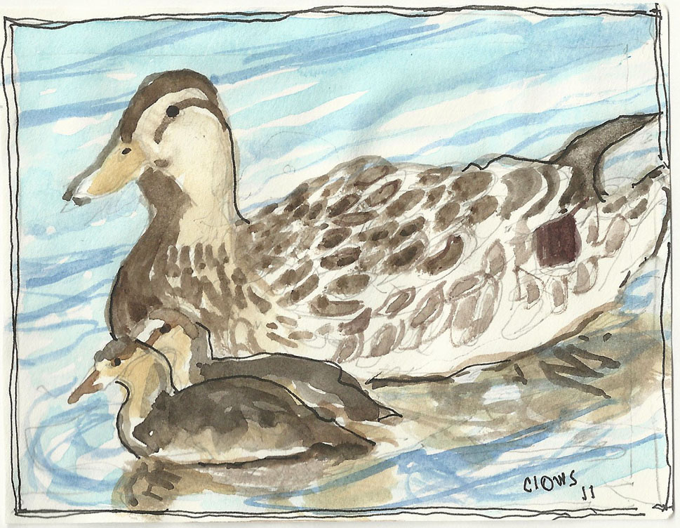 """Duck,"" a Bring-a-Smile watercolor by Clovis Heimsath, artist"