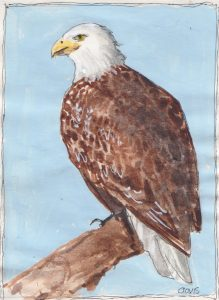 """Eagle 22,"" a Bring-a-Smile watercolor by Clovis Heimsath, artist"