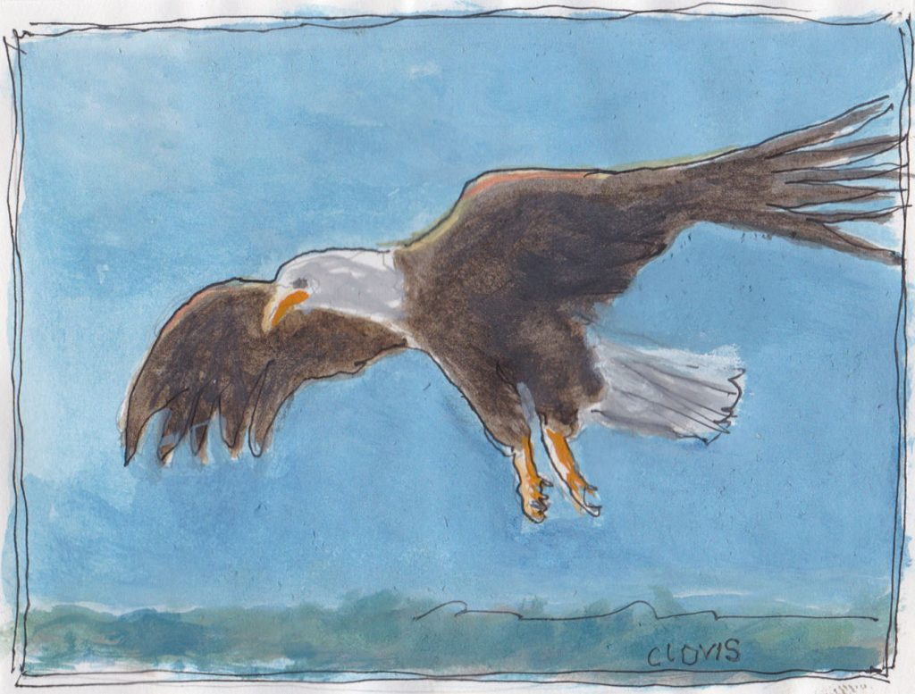 """Eagle 3,"" a Bring-a-Smile watercolor by Clovis Heimsath, artist"