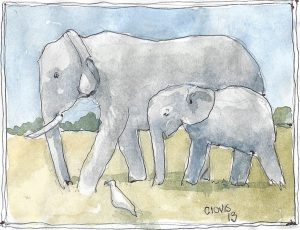 """Elephant ,"" a Bring-a-Smile watercolor by Clovis Heimsath, artist"