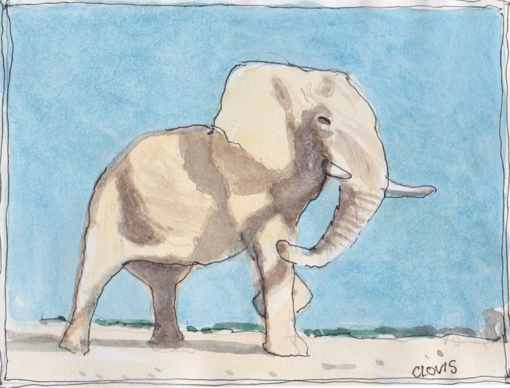 """Elephant,"" a Bring-a-Smile watercolor by Clovis Heimsath, artist"