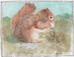"""Fall Squirrel ,"" a Bring-a-Smile watercolor by Clovis Heimsath, artist"