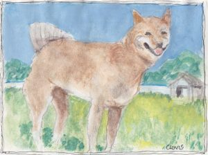 """Farm Dog ,"" a Bring-a-Smile watercolor by Clovis Heimsath, artist"