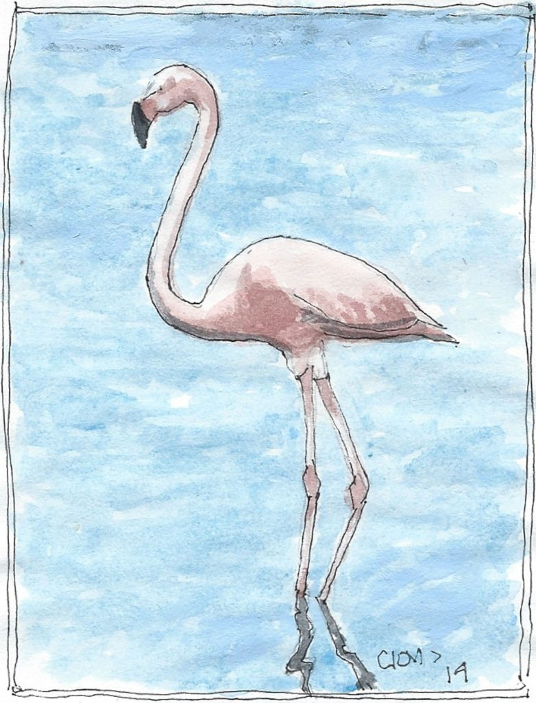 """Flamingo,"" a Bring-a-Smile watercolor by Clovis Heimsath, artist"