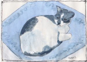 """Flo S Cat,"" a Bring-a-Smile watercolor by Clovis Heimsath, artist"