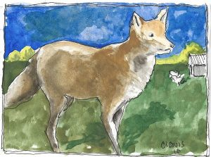"""Fox,"" a Bring-a-Smile watercolor by Clovis Heimsath, artist"