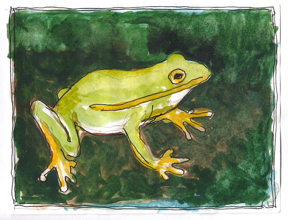 """Frog,"" a Bring-a-Smile watercolor by Clovis Heimsath, artist"