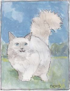 """Furry Cat,"" a Bring-a-Smile watercolor by Clovis Heimsath, artist"