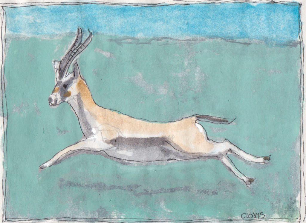 """Gazelle,"" a Bring-a-Smile watercolor by Clovis Heimsath, artist"