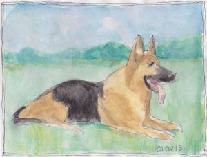 """German Shepherd,"" a Bring-a-Smile watercolor by Clovis Heimsath, artist"