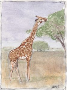 """Giraffe 3,"" a Bring-a-Smile watercolor by Clovis Heimsath, artist"