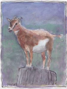 """Goat,"" a Bring-a-Smile watercolor by Clovis Heimsath, artist"