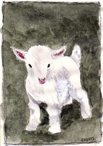 """Goat Kid D,"" a Bring-a-Smile watercolor by Clovis Heimsath, artist"