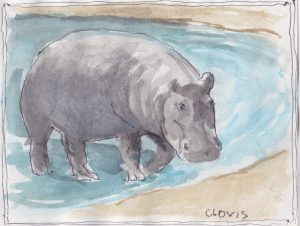 """Hippopotamos,"" a Bring-a-Smile watercolor by Clovis Heimsath, artist"