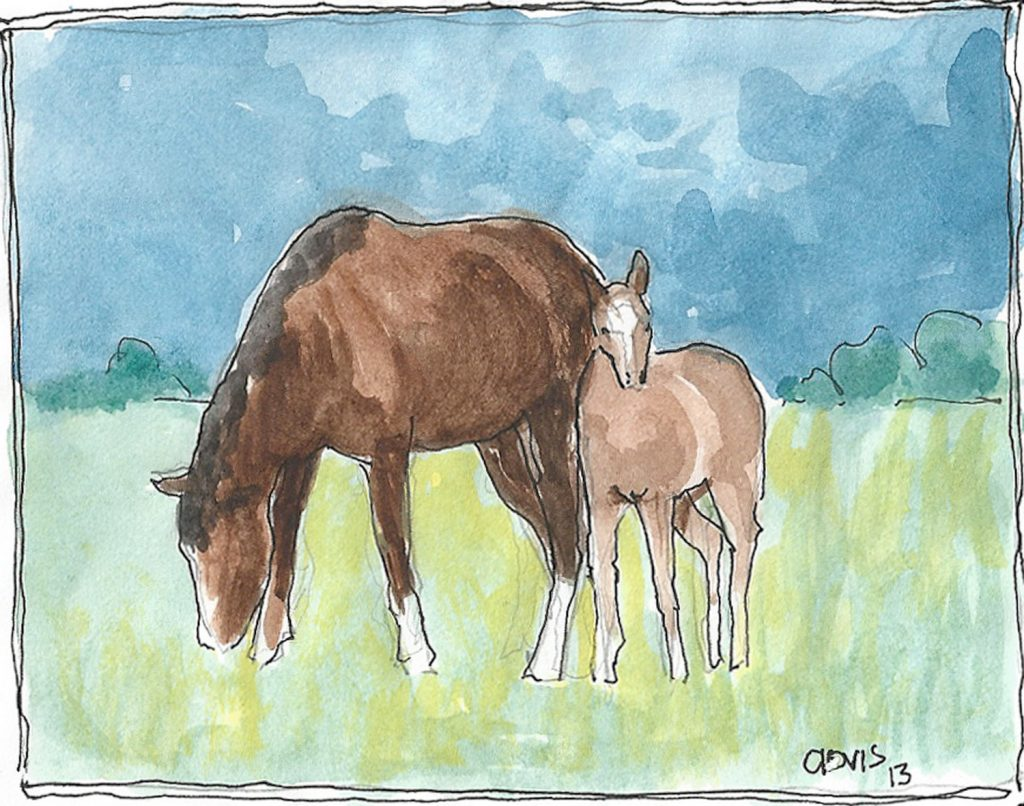 """Horse And Colt 2,"" a Bring-a-Smile watercolor by Clovis Heimsath, artist"