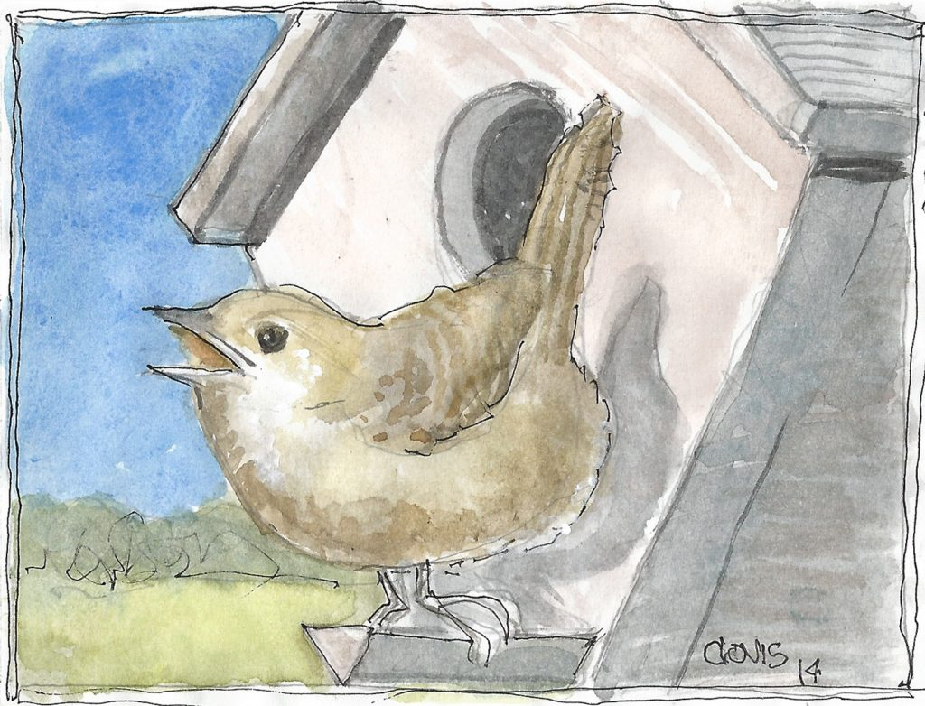 """House Wren,"" a Bring-a-Smile watercolor by Clovis Heimsath, artist"
