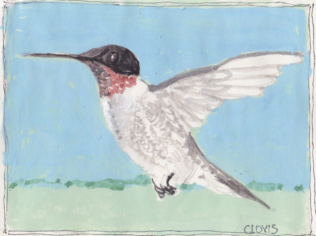 """Hummingbird 2,"" a Bring-a-Smile watercolor by Clovis Heimsath, artist"