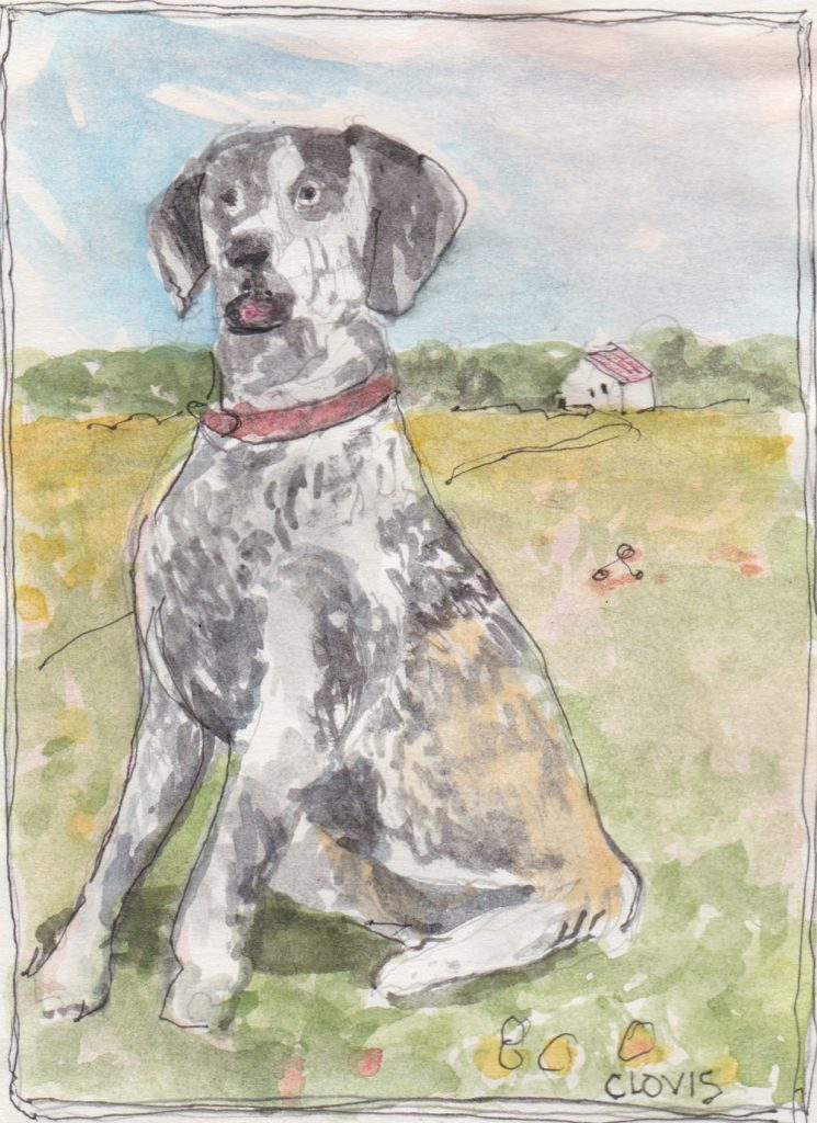 """Hunting Dog 2,"" a Bring-a-Smile watercolor by Clovis Heimsath, artist"