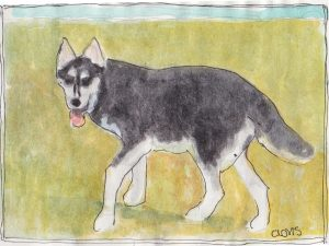 """Husky,"" a Bring-a-Smile watercolor by Clovis Heimsath, artist"