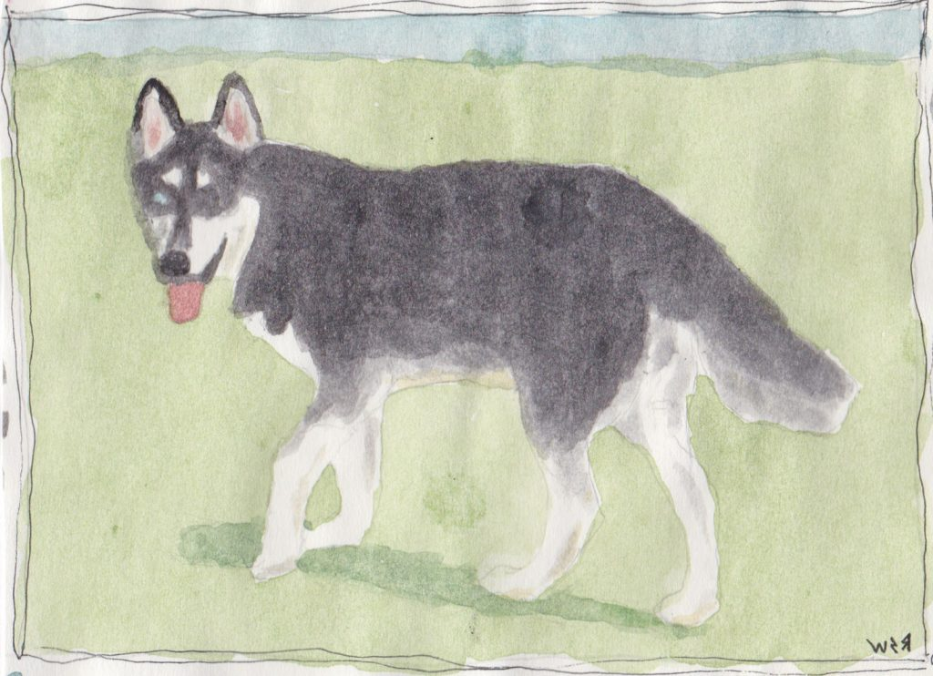 """Husky,"" a Bring-a-Smile watercolor by Ruben Santa-Waldron, artist"