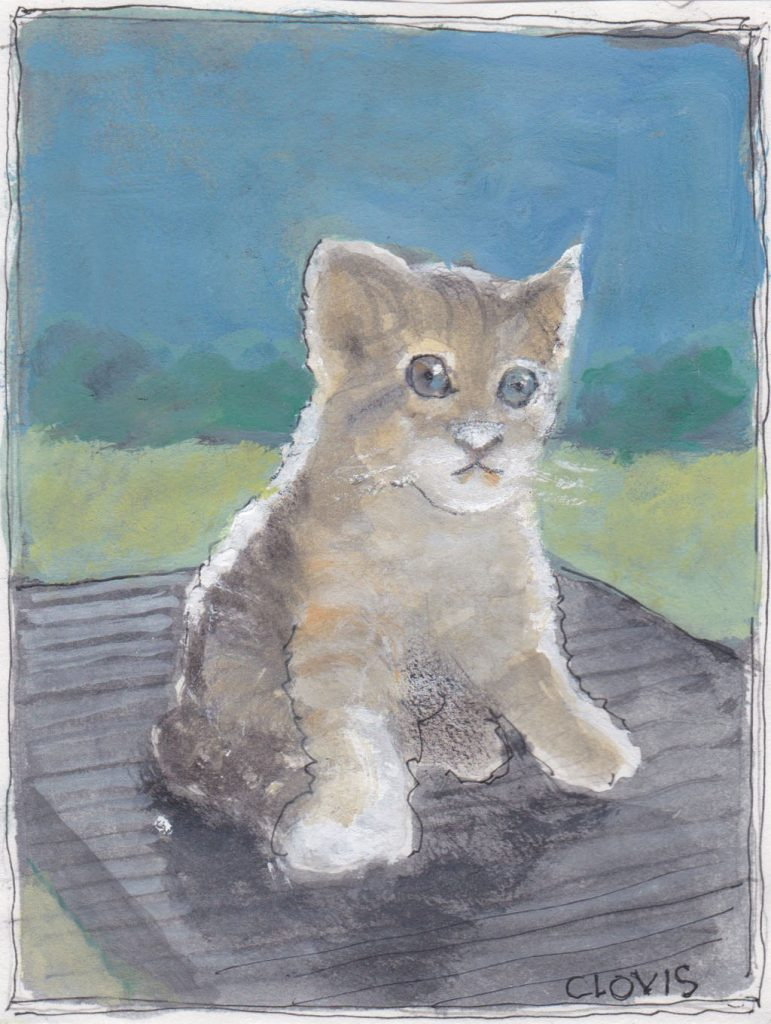 """Kitty 6,"" a Bring-a-Smile watercolor by Clovis Heimsath, artist"